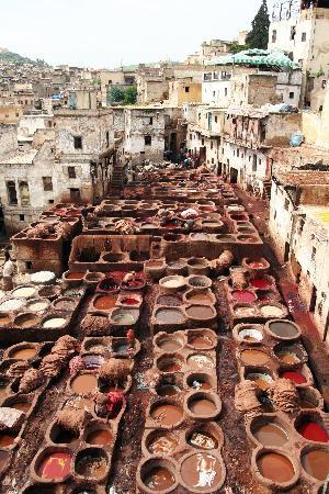 Fes tanneries 2