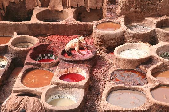 Fes tanneries 1