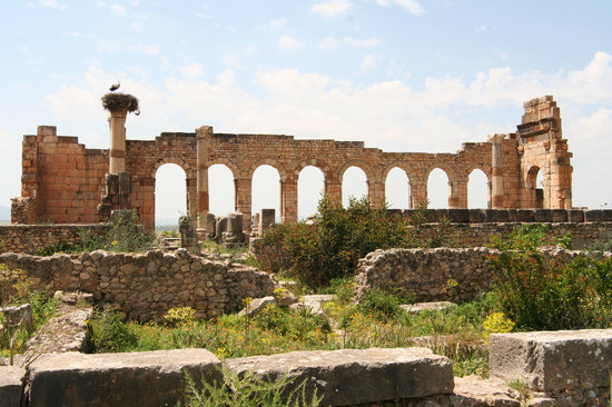Meknes-Tafilalet Region, Maroko: Volubilis - beautiful Roman ruins