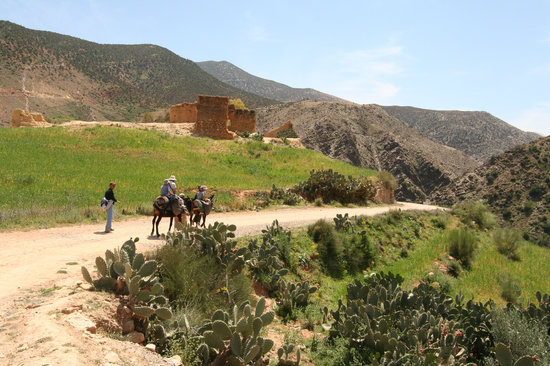 Amizmiz - donkey ride to Berber village
