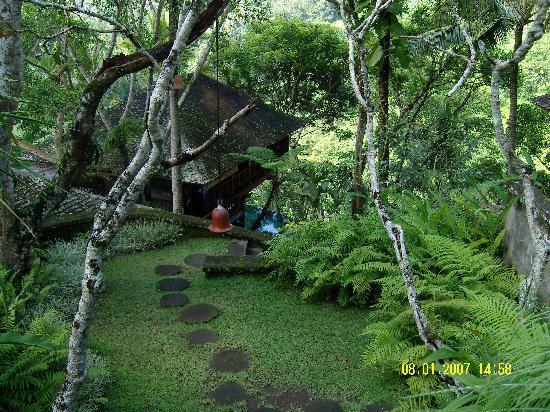 COMO Shambhala Estate: grounds