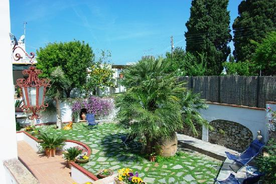 Mediterraneo: The garden of the guest house