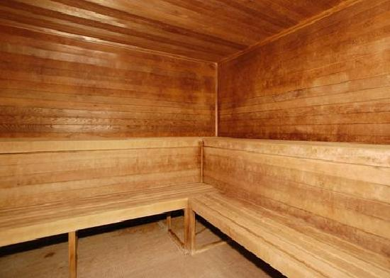 Comfort Suites University Area: Sauna