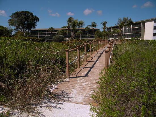 Sand Pointe Condominiums: Sand Pointe from beach