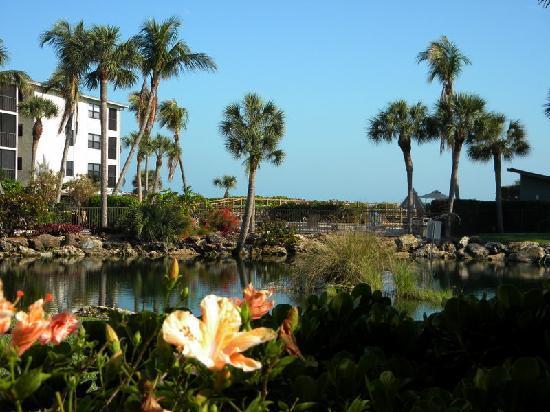 Sand Pointe Condominiums: Sand Pointe grounds