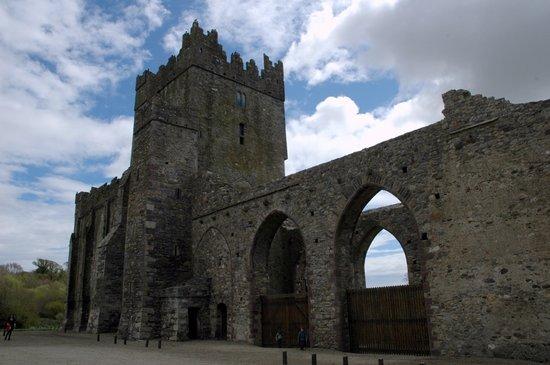 Wexford, Irland: Tintern Abbey