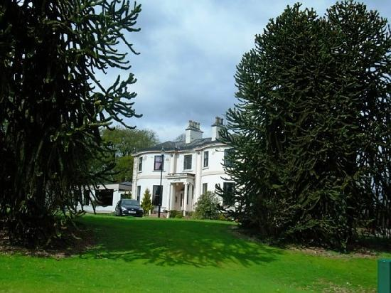 Woodland House Hotel: Through the monkey-puzzle trees
