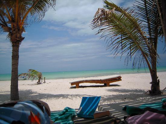 Holbox Hotel Mawimbi: What a view!