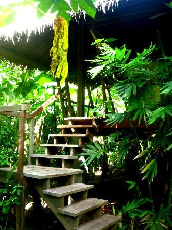 Kawayan Siargao Resort: ...notre cottage in the air!!!