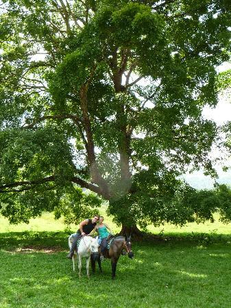 Jaco, Costa Rica : posing after a good canter
