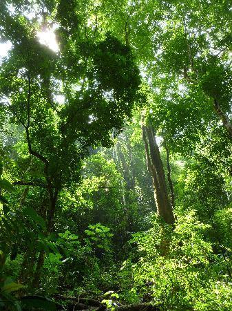 Jaco, Costa Rica : beautiful scenery