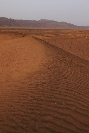Zagora, Marruecos: Sand dunes of Erg Chebbi