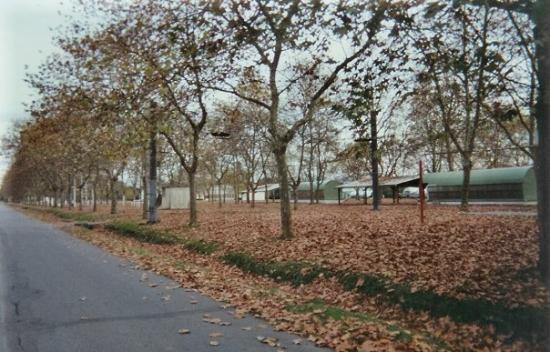 Pau Photo