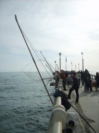 Foto de Forte dei Marmi