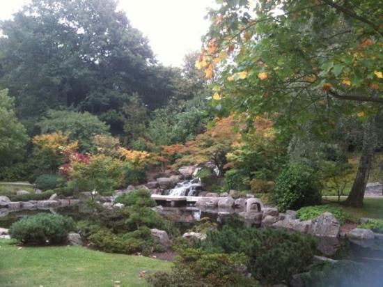 Jardin kyoto photo de holland park londres tripadvisor for Jardin kyoto