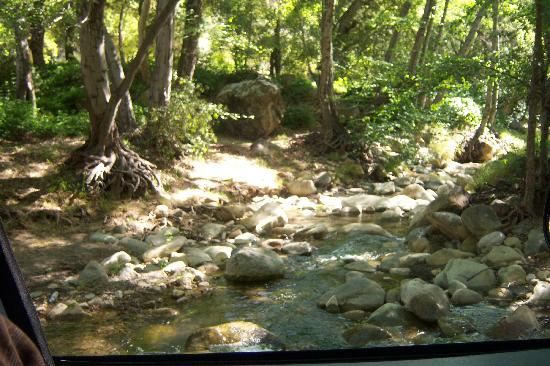 Ojai, Kalifornia: Creek