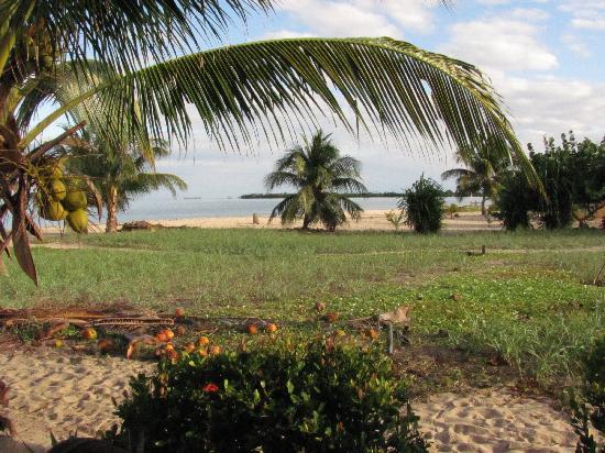 Colibri House: The Beach