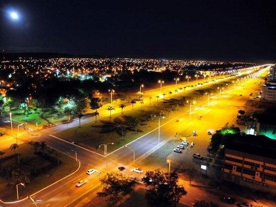 Palmas Foto