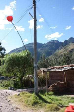 Urubamba, Peru: A red flag at the end of a pole means that the farmer is selling Cerveza.