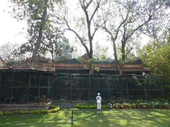 Malla Hotel: les volières dans le parc