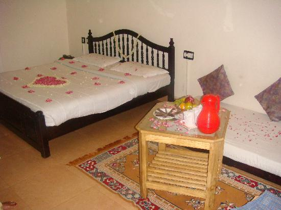 Las Palmas Munnar: View of the room