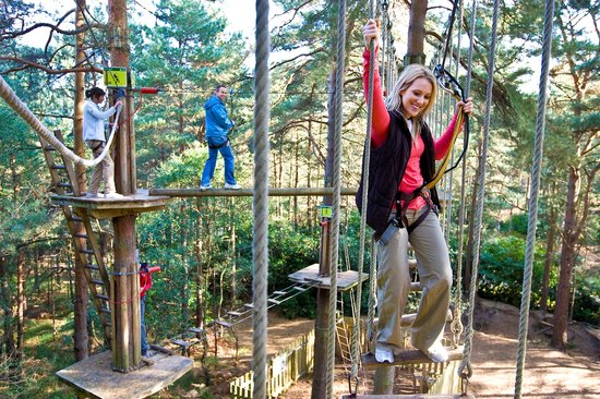 Rockville, MD : Go Ape Treetop Adventure