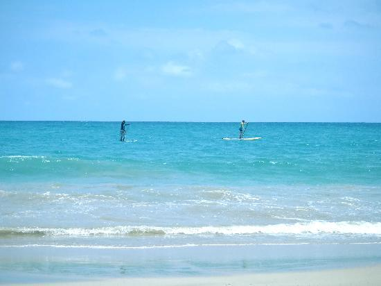 Swell Surf Camp: SUP surf lessons with Luciano