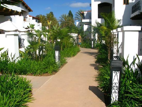 Omni La Costa Resort & Spa: Grounds