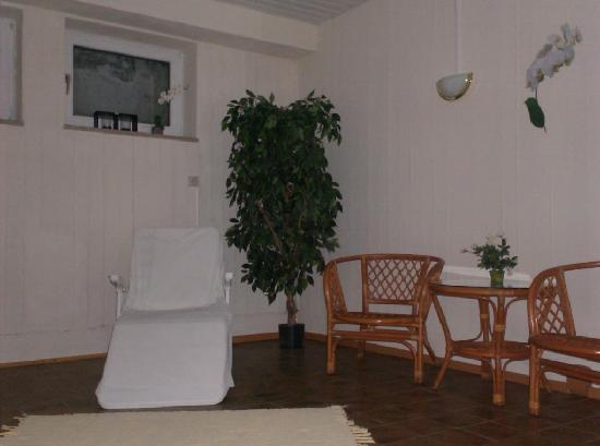 Hotel Alpenhof : part of the wellnessroom (ifrared cabine not visible)