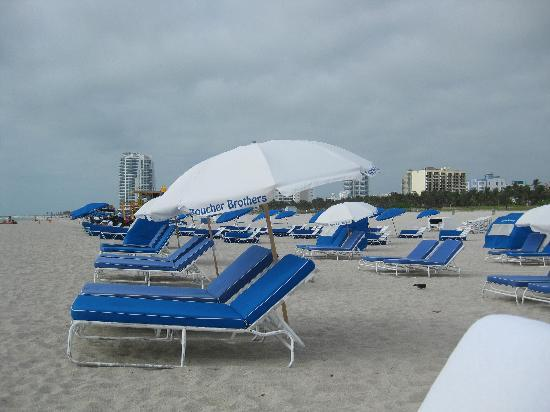 The Hotel Of South Beach Chairs And Umbrellas That You Get