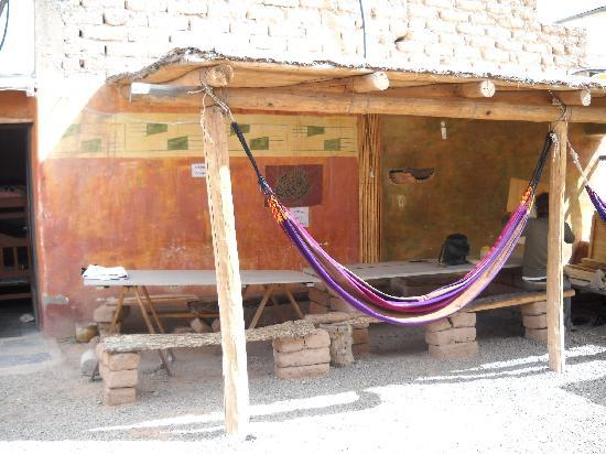 Burrito Hostel: Backyard