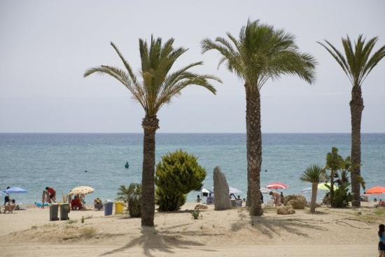 Garrucha, Spain: Beach