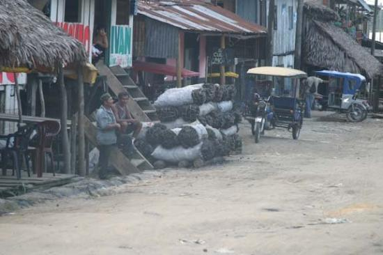 Iquitos, Peru: Charcoal. An environmentalist nightmare.