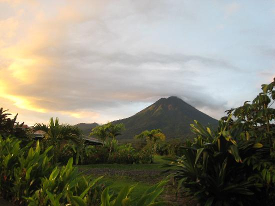 Arenal Manoa Hotel: The View