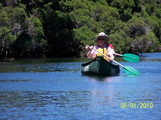 Canoeing - along peaceful Margaret River