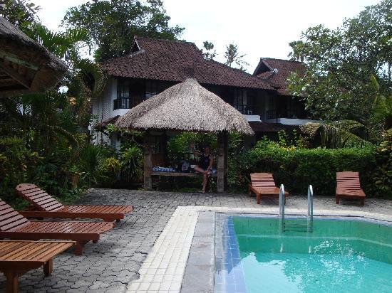 Puri Kelapa Garden Cottages: situation at the pool