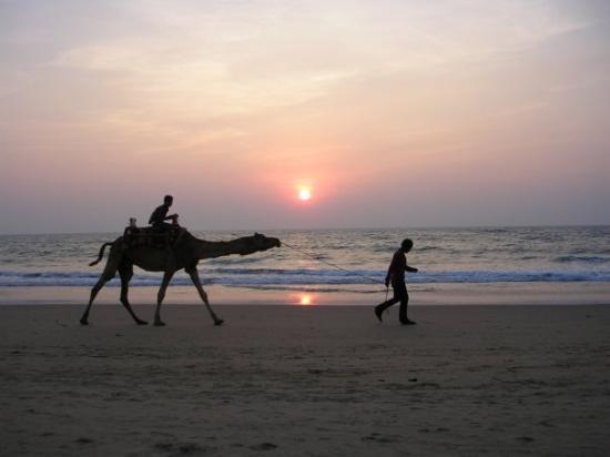 Benaulim - Oceano Indiano