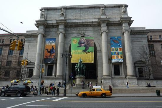 The Natural History Museum Nyc Hours