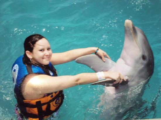 Isla Mujeres, Mexiko: I like this one best :) dolphins are awesome ! I'm so glad I put this on my to do list, i could