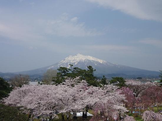 Hirosaki Castle: 岩木山