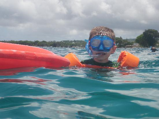 Cool Runnings Catamaran Cruises: my son snorkeling