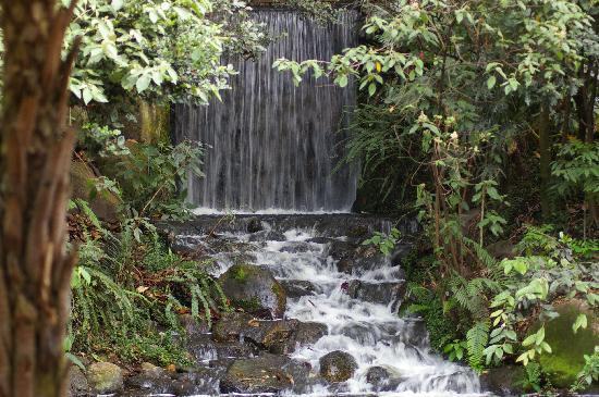 Bogotá, Kolumbien: Botanical Gardens