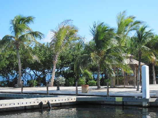 MB at Key Largo: Will add more photos soon, just a great shot of the grounds