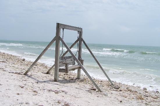 Honeymoon Island State Park: BEACH  SWING