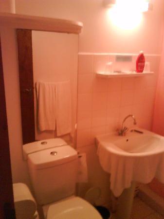 Hotel l'Escapade : Miroir sur WC!!!