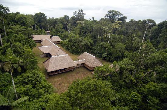 Tambopata Research Center: Lodge View from macaw nest