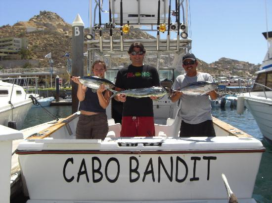 The cabo bandit picture of cabo magic sportfishing cabo for Magic sport fishing