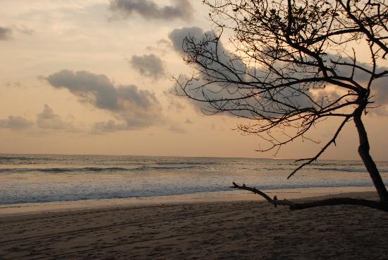 Mariposa Vacation Homes: Beach view at Casas Pura Vida - Santa Teresa CR