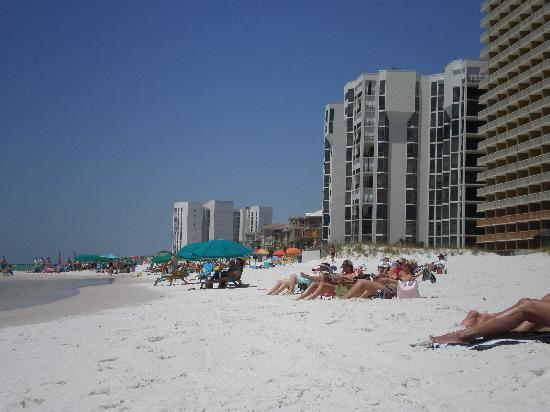 Destin Holiday Beach Resort 2: beach directly behind the condos!