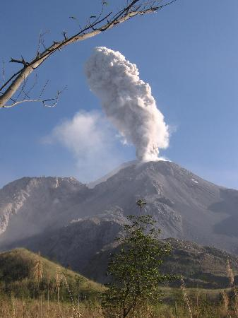 Earth Lodge : Volcan Fuego in the morning